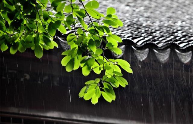 """""""暴雨+高温模式""""的梅雨季节不如来套不锈钢橱柜"""